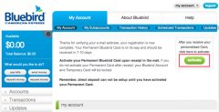 AMEX Bluebird-Free Checks-First Activate Bluebird Card