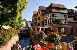 colmar alsace france flowers