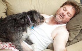 dog-sleeping-with-owner-4