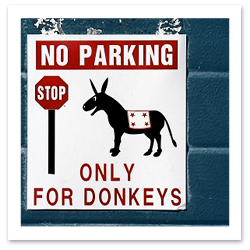Funny Travel Stories - Parking Only for Donkeys
