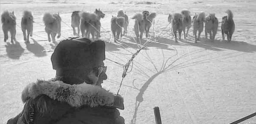 Travel by Dog sled