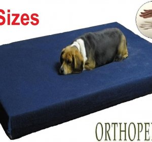 Travel Dog Beds for large dogs