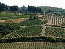 tuscany vacation package