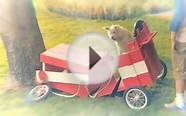 Armstrong-Hailey Ins. Travelers Insurance - Soapbox Car