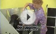 Muddy Dog groomers