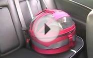 Pet Safety Lady with Dog/Cat Car Seat
