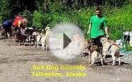 Sun Dog Kennels - Sled Dog Excursion - Talkeetna, Alaska