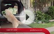 Travelers Insurance - Good Job (Dog Commercial)
